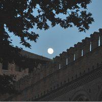 Apertura serale dei Musei Civici di Pavia