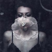 Gabriele Panteghini. I fiori di Ofelia