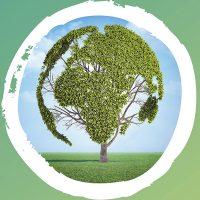 Green eArth - Installazioni realizzate con materiali riciclati