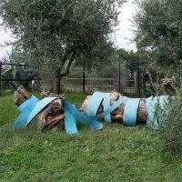 Sculture in campo. Parco di Scultura Contemporanea - III edizione