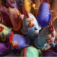 Francesca Pastore. 100 galline tra i Sassi di Matera