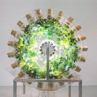 Incontro con Nick Laessing: Nuovi insiemi. Arte, scienza e sostenibilità