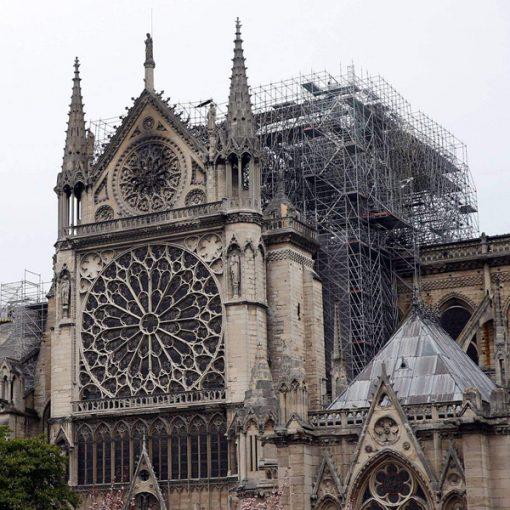 Incontro: Notre-Dame sei mesi dopo