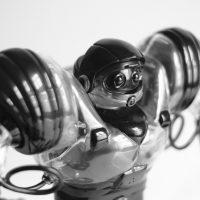 Io, Robotto - Automi da compagnia