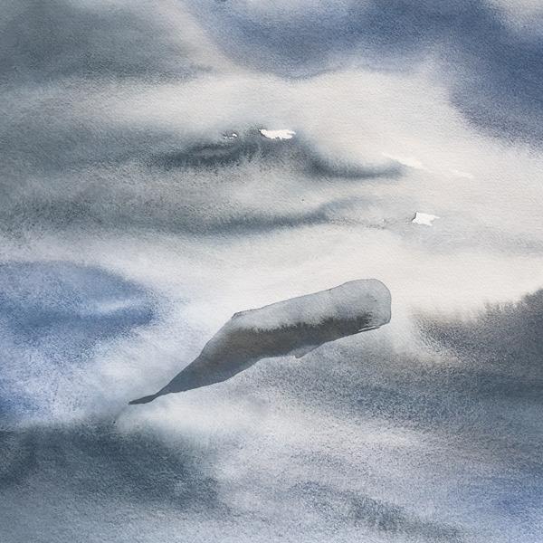 Nicola Magrin. La balena va in montagna