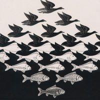 """Arte al Cinema: """"Escher - Viaggio nell'infinito"""""""