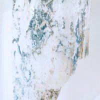 Identità nomadi. Alessio Barchitta - Daesung Lee - Cyryl Zakrzewski