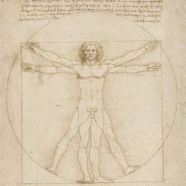 L'Uomo vitruviano è tornato alle Gallerie dell'Accademia di Venezia