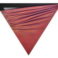 Tornquist - Costalonga - Hsiao. Colore movimento illusione