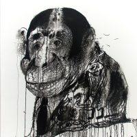 Daniele Cudini. La collezione di Adriano Rupelli