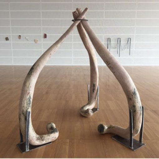 Ossi - Installazione di Claudia Losi