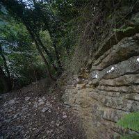 Bando Land Art al Furlo - XI edizione: Il cammino dell'Arte