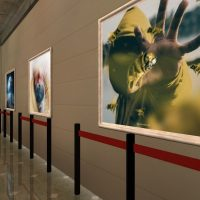 Expo3d: Unknownian. Trough digital art