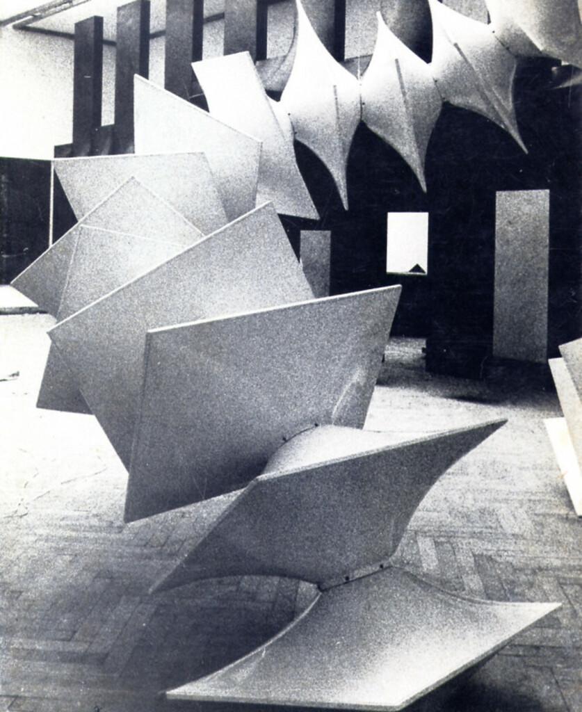 """Agostino Bonalumi"" Ed. Galleria Lorenzelli - Bergamo - 1976"