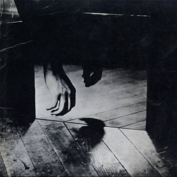 Aiko Miyawaki. Percepire il mondo come un gioco psicologico