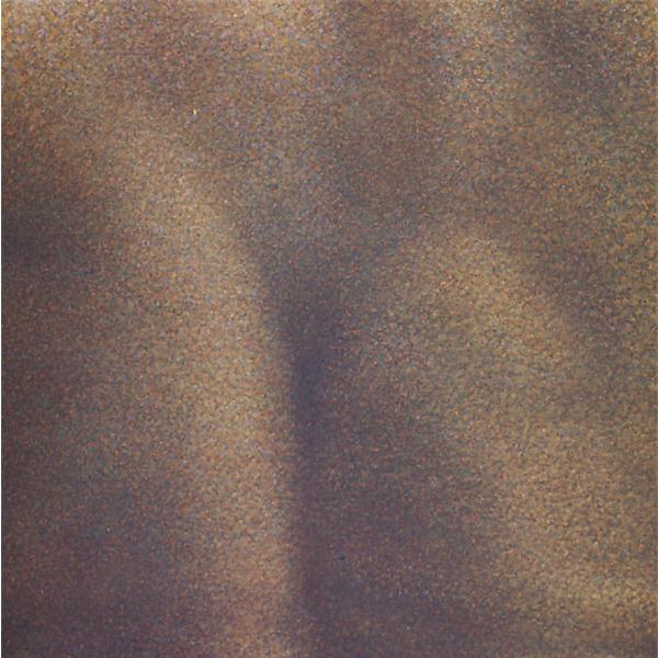 Franco Sarnari. L'ombra, l'impronta, la traccia nel barlume misterioso