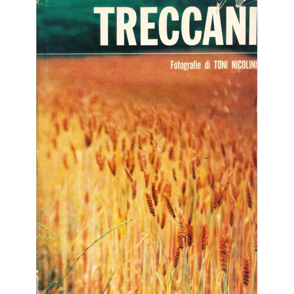 Ernesto Treccani - Fotografie di Toni Nicolini