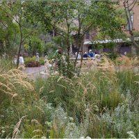 Landscape Festival - I maestri del paesaggio. X edizione