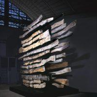 Maria Cristina Carlini. Geologie, memoria della terra