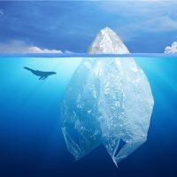 Concorso: Plastica d'A-mare - Seconda edizione