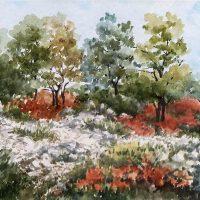 Mariuccia Diviacco. I colori della mia terra - Il senso della bellezza nella semplicità