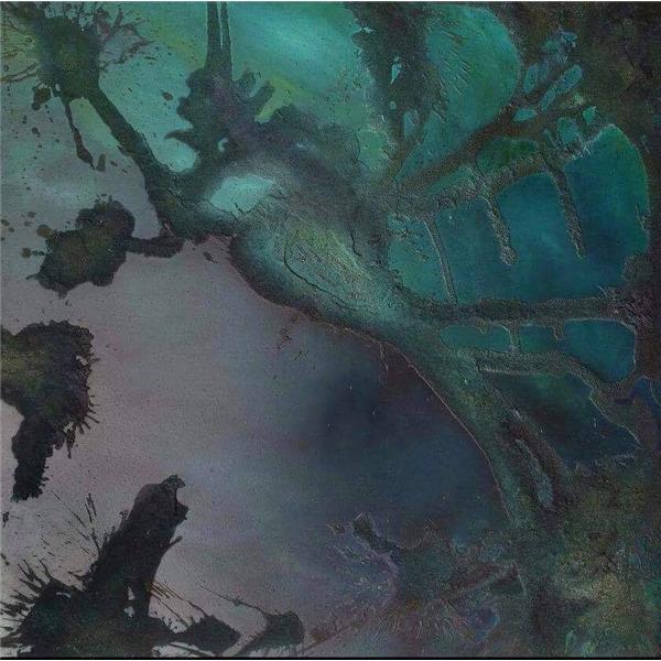 Delia Neduri. Abyssus