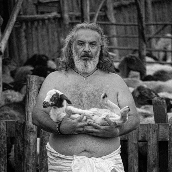 Giampiero Pippia. Animas e animales - Sa terra de sos pastores