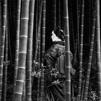 In Giappone la bellezza è iniziatica - Fotografie di Fosco Maraini, Olmo Amato e Michela Cavagna