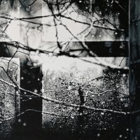 Photography and its contaminations - Mostra collettiva