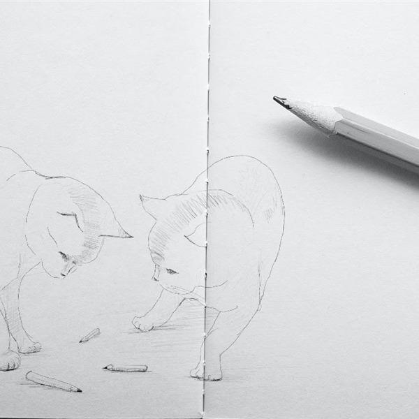 Atelier de dessin. Corso base di disegno