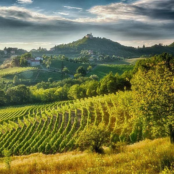 Concorso: Esplorare Gavi - Immagini d'autore dal Piemonte