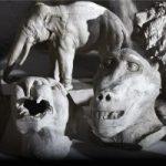 Inventario Varoli - Della copia e dell'ombra
