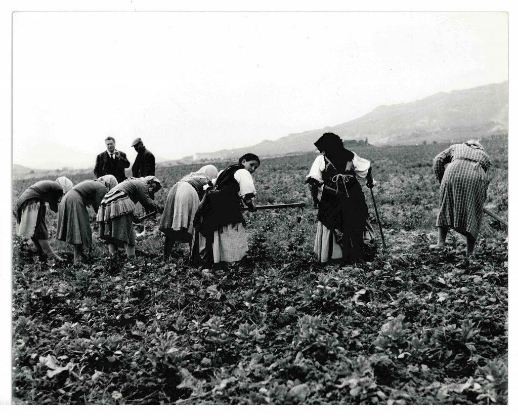 E' online l'archivio fotografico inedito della Fondazione Carlo Levi