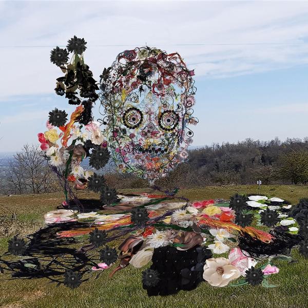 Marina Gasparini. Transiti - Tracce d'arte sul territorio