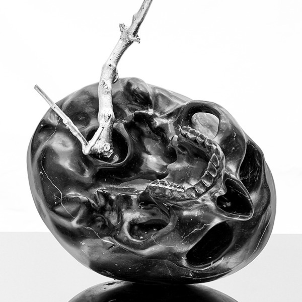 Michelangelo Galliani. Nebula
