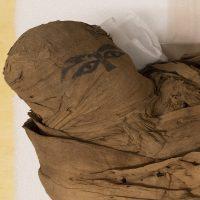 L'uomo svelato. Studi e restauro di una mummia egizia di 4500 anni
