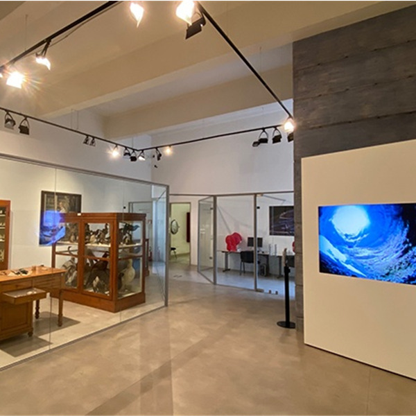 Museo di Storia Naturale di Verona: nuova sala e laboratorio intitolate a Dal Nero