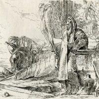 Tiepolo, Canaletto e i maestri del '700 - Il Settecento veneziano in 48 opere del Gabinetto dei disegni