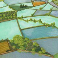 Tracce d'acqua. Disegno e paesaggio dal lago alla risaia