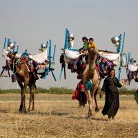 Ancora in cammino. In migrazione con i pastori Rabari Vagadiya del Kutch