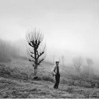 Raymond Depardon. La vita moderna